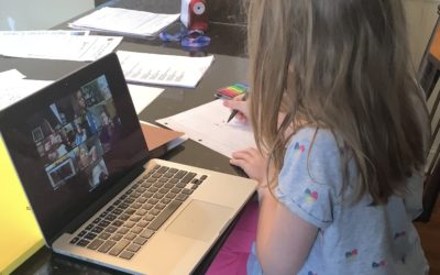 Child Labor Laws: Have a child at home to help with the family business?